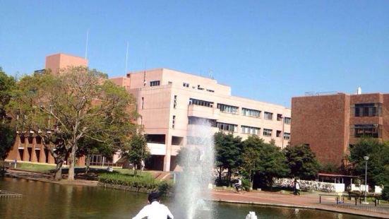 Tsukuba University Second Area Small Shokudo