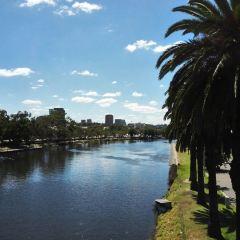 Auckland User Photo