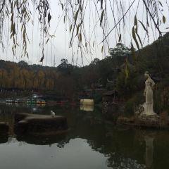 西山子云亭風景區用戶圖片
