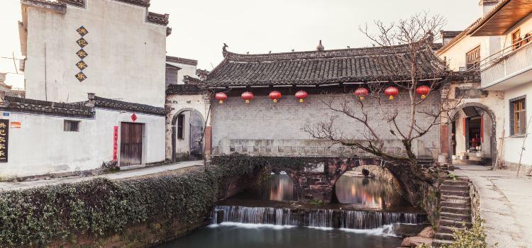 Tang Mo1