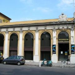 Natural History Museum of Geneva User Photo