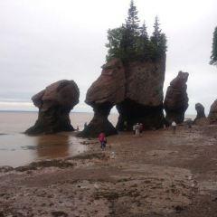 The Hopewell Rocks User Photo