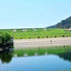 Huangcai Reservoir User Photo