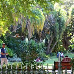 街心花園用戶圖片