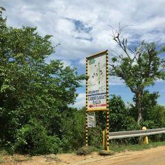캄부가이 폭포 여행 사진