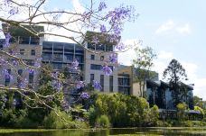 昆士兰大学-布里斯班-青釉