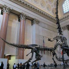 라스베가스 자연사박물관 여행 사진