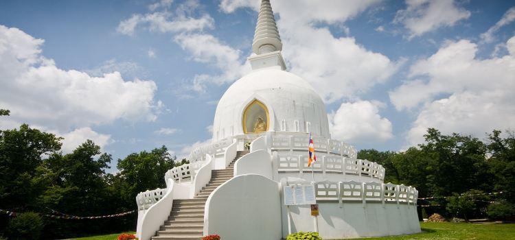 Peace Pagoda2