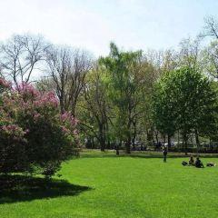 Kampa Park User Photo