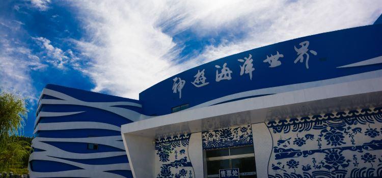 웨이하이 선여우 해양세계2