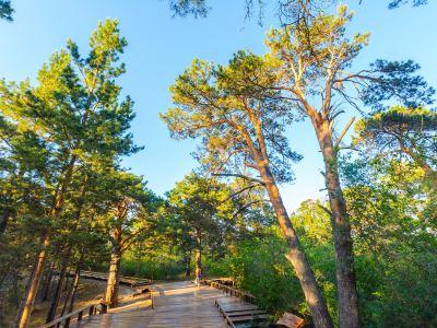 하이라얼 서산국립삼림공원