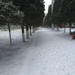 阜新人民公園用戶圖片