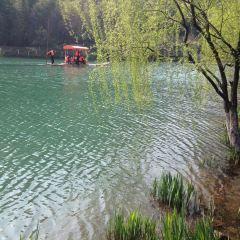 靜湖用戶圖片