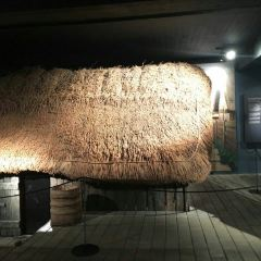 Vikinge Museet User Photo