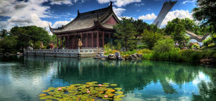 蒙特利爾植物園3