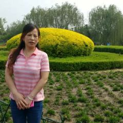 Baoding Agriculture Ecological Garden User Photo