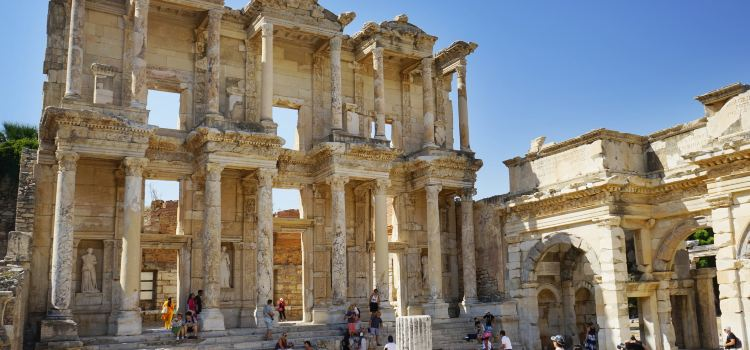The Celsus Library3