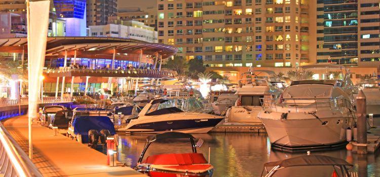 Dubai Marina Yacht Club1