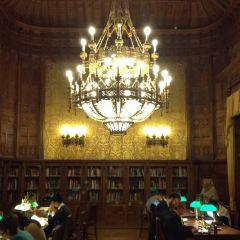塞錢尼國家圖書館用戶圖片