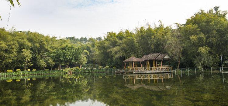 Shishan Park2