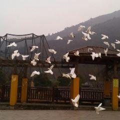 우시 동물원(태후환러위안) <무석동물원(타호환러원)> 여행 사진
