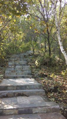 野三坡白草畔景区-野三坡-山东龙行天下