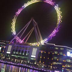 Symphony Ferris Wheel User Photo