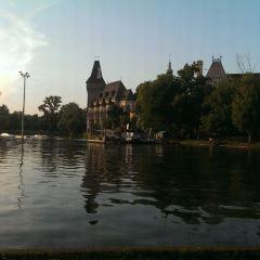 城市公園用戶圖片