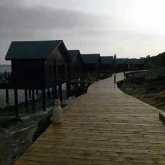 東壁島度假區用戶圖片