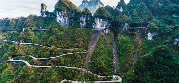 중국 텐먼산 통천대도1