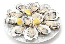 尼斯美食图片-牡蛎