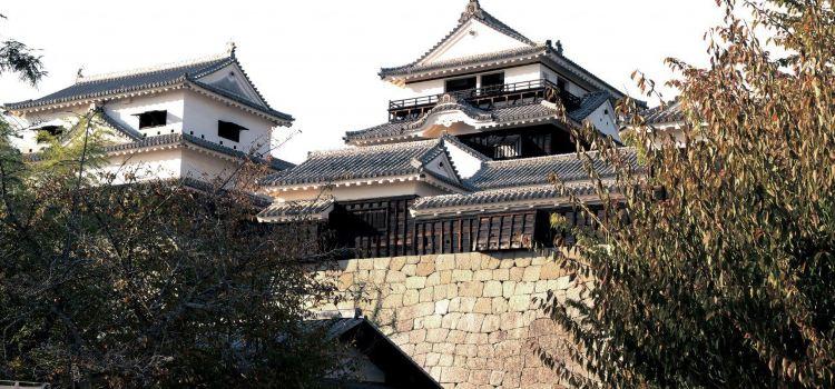 Matsuyama Castle3