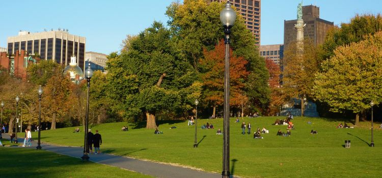 Boston Common2