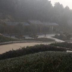 聖泉寺用戶圖片