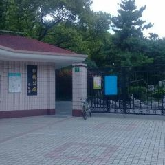 Songhe Park User Photo