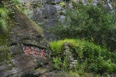 大红袍景区-武夷山-doris圈圈