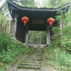 Fairy Village User Photo