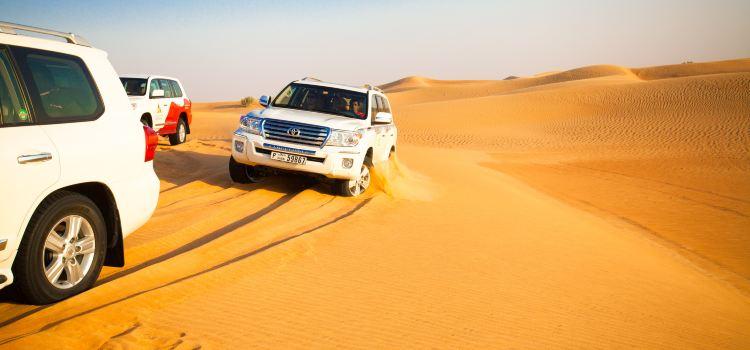 두바이 사막 보존 지역2
