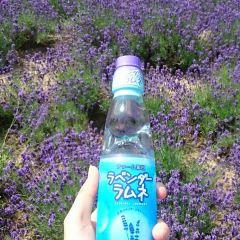 Hitsujinooka User Photo