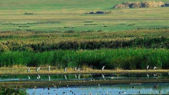 輝河國家級自然保護區
