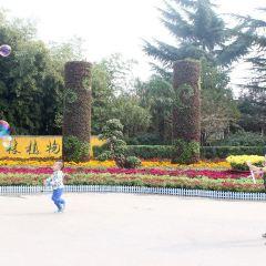 寶雞植物園用戶圖片