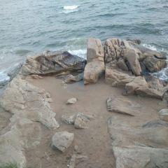 Tiger Stone Marine Park User Photo