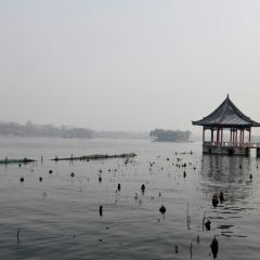 大明湖用戶圖片