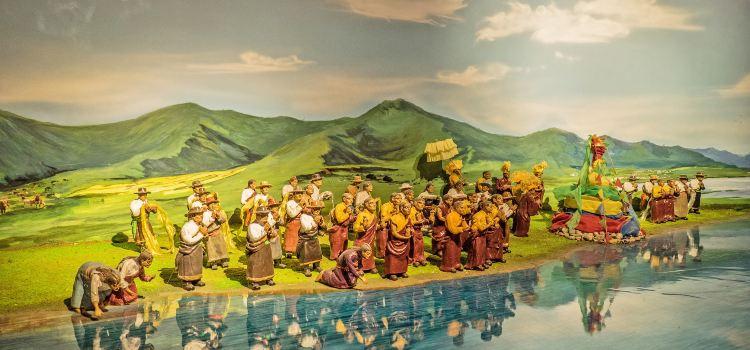 青海省博物館3