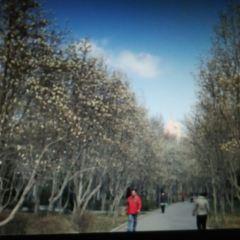 Baihua Park User Photo