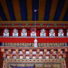 羊八井寺用戶圖片