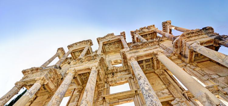 The Celsus Library2