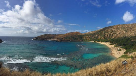 Oahu Island Diving Experience
