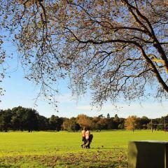 Hagley Park User Photo