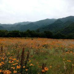 Hongchiba National Forest Park User Photo